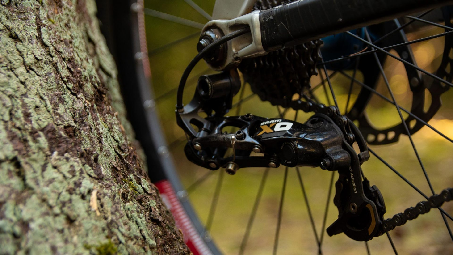 Teambike 2020 Thilo Egert Trek session 9.9 biking is awesome
